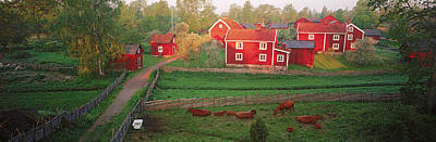 Red Farmhouse Photograph - Traditional Red Farm Houses And Barns by Panoramic Images