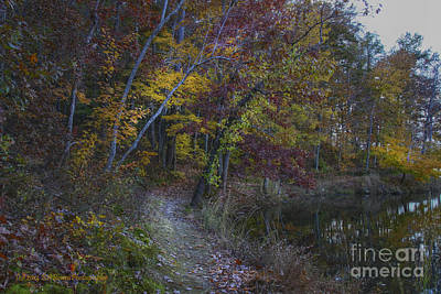 Photograph - Trail Along The Sloppy Floyd Lake by Barbara Bowen