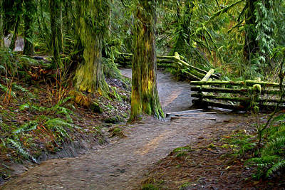 Photograph - Trail At Cliff Falls Digital Painting by Sharon Talson