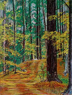 Trail At Wason Pond Art Print
