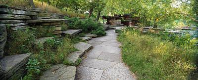 Caldwell Photograph - Trail Caldwell Lily Pond Lincoln Park by Steve Gadomski