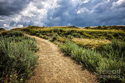 Beautiful Vistas Photograph - Trail In Badlands In Alberta Canada by Elena Elisseeva