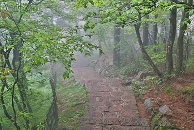 Anhui Photograph - Trail In Fog, Yellow Mountains A Unesco by Darrell Gulin