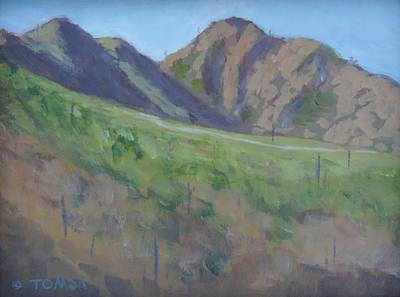 Painting - Trail To Camelback by Bill Tomsa