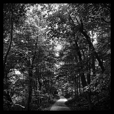 Photograph - Trail To Love by Al Harden