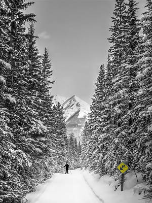 Trails And Mountains In Kananaskis Country  Art Print