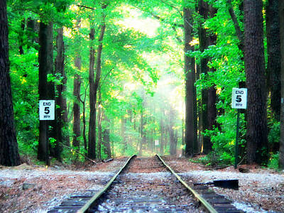 Photograph - Train Tracks In Forest by Alice Gipson