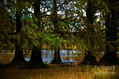 Photograph - Tranquil And Serene by Peggy Franz