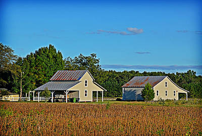 Photograph - Tranquil Farm by Linda Brown