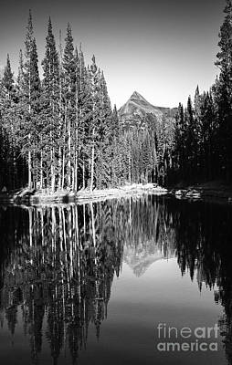 Photograph - Tranquil Lake Reflections Tuolumne Meadows Mountain Pine Trees Yosemite National Park Black And Whit by Jerry Cowart