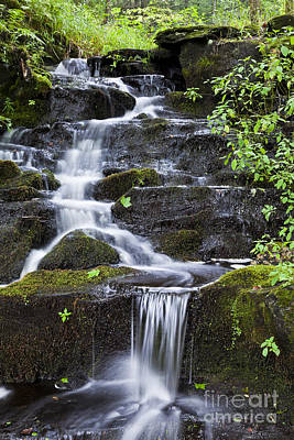 Photograph - Tranquil Mountain Brook by Alan L Graham