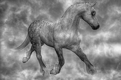 Black And White Horses Digital Art - Tranquil Mystic by Betsy Knapp
