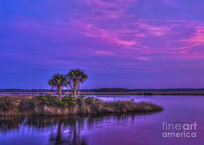Tidal Photograph - Tranquil Palms by Marvin Spates
