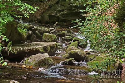 Photograph - Tranquil Stream by Dawn Gari