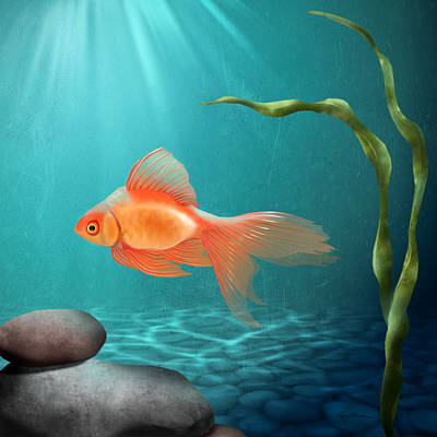 Gold Fish Digital Art - Tranquility by April Moen