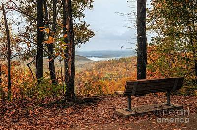 Art Print featuring the photograph Tranquility Bench In Great Smoky Mountains by Debbie Green
