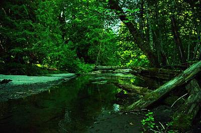 Tranquility In The Grove Of The Patriarches Art Print by Jeff Swan