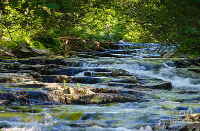 Photograph - Duck Brook Creek by Tamara Becker