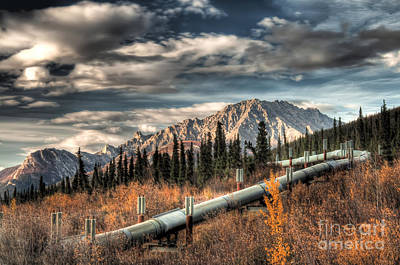 Dalton Highway Photograph - Trans Alaska Pipeline Hdr by Carl Johnson