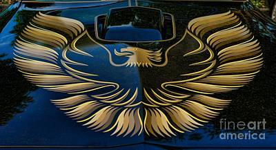 Balck Art Photograph - Trans Am Eagle by Paul Ward