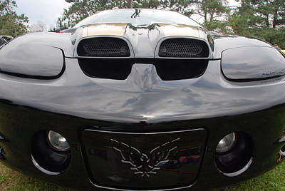 Photograph - Trans Am by John Schneider
