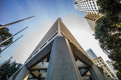 Photograph - Transamerica Tower by Mike Evangelist