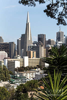 Photograph - Transamerica View by Kate Brown