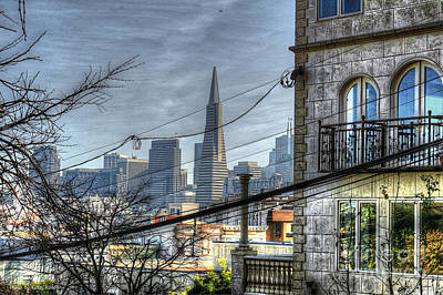 Photograph - Transamerica View by Kevin Ashley