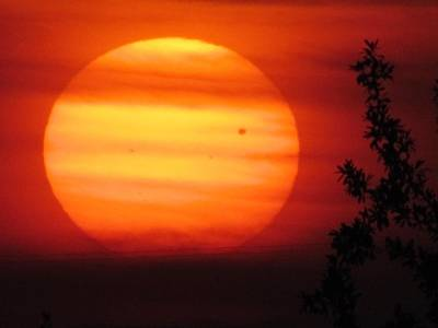 Wall Art - Photograph - Transit Of Venus 2012 by Shannon Story