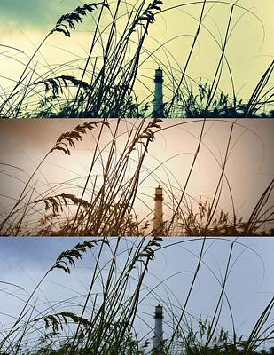 Photograph - Transitions by Laurie Perry