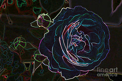 Photograph - Transparent Rose by Mike Flake