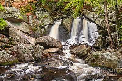 Photograph - Trapp Falls by Susan Cole Kelly