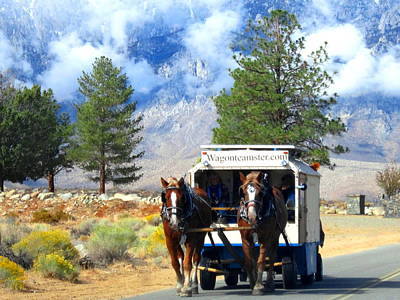 Art Print featuring the photograph Traveling by Marilyn Diaz