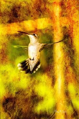 Hummingbird - In Flight - Treading Air Art Print by Barry Jones