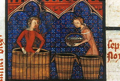 Psalter Painting - Treading Grapes by Granger