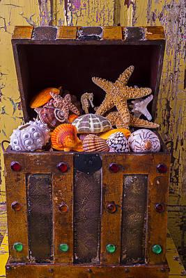 Treasure Chest Full Of Sea Shells Art Print by Garry Gay