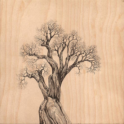 Digital Art - Tree 37 On Wood by Brian Kirchner