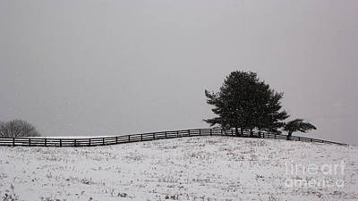 Tree And Fence In Snow Storm Art Print