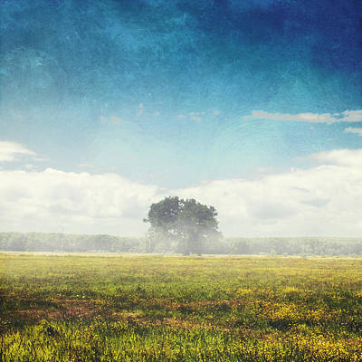 Licht Wall Art - Photograph - Tree And Meadow by Dirk Wuestenhagen