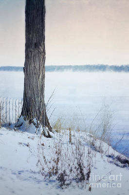 Photograph - Tree And Picket Fence By The Misty Lake In Winter by Jill Battaglia