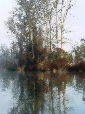 Photograph - Tree And Reflection by Mamoun Sakkal