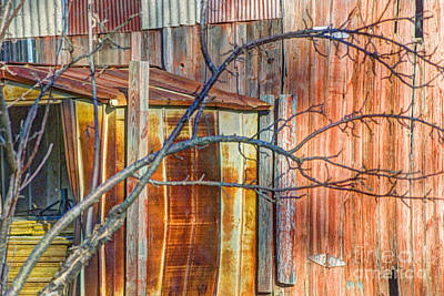 Tree And Rust Art Print by Jim Wright