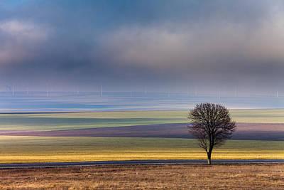 Tree And Wind Power Original by Dan Mirica