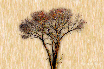 Country Mixed Media - Tree Art. by Marvin Blaine