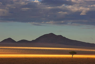 Mountain Photograph - Tree At Sunrise Namibrand Nature by Theo Allofs