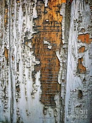 Tree Bark 2 Art Print