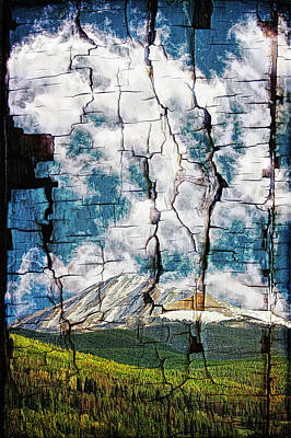 Photograph - Tree Bark Mountain Tapestry by Lincoln Rogers