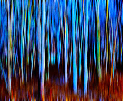 Fantasy Tree Mixed Media - Dusk Woods Blur by Brian Stevens