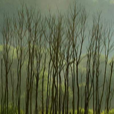 Photograph - Tree Blur by Francois Dion