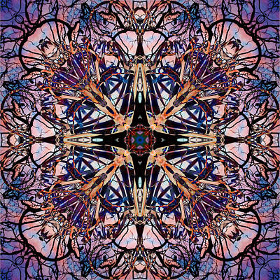 Digital Art - Tree Branch Kaleidoscope 2 by Francesa Miller